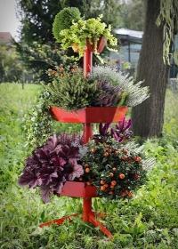 cipolat-dopra-vaso-con-fiori